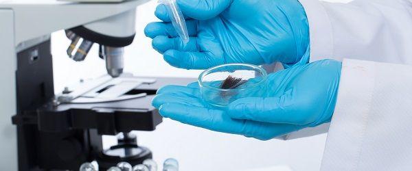 Laboratórios: 6 pontos para se atentar sobre a coleta do exame toxicológico