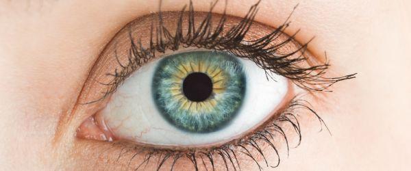Saúde dos olhos é importante para a segurança do motorista na estrada